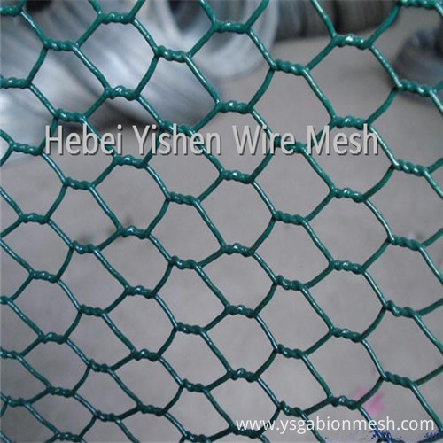 PVC hexagonal wire mesh1_