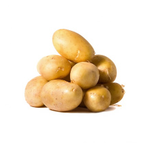 Chinese organic and healthy feature fresh vegetable potatoes/ potatoes Seeds with top grade
