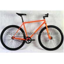 700c Orange Color Single Speed Fashion Fixed Gear Bike