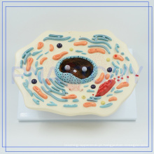 PNT-0815 ampliado 20000 vezes modelo de célula animal