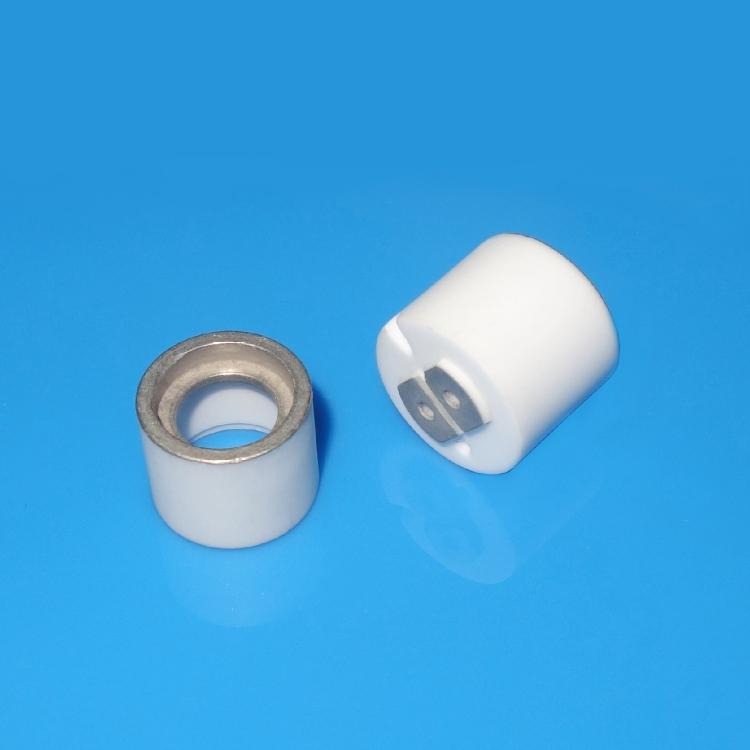 2 Pin metallized ceramic part