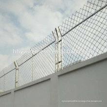 Fabricante de productos de calidad de exportación picos de pared de seguridad alambre de púas de afeitar