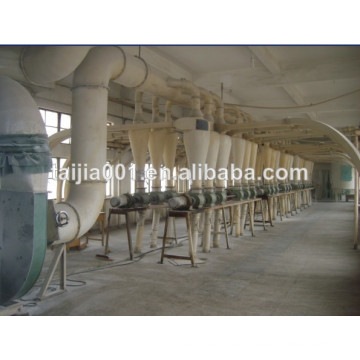 Wheat Gluten Meal Export, Origin China
