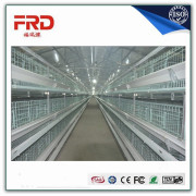 Trade assurance 100% payment guarantee factory supply layer egg chicken cage/poultry farm house design