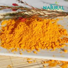 Naturalnf USP Standard Powder Coenzyme Q10 Powder