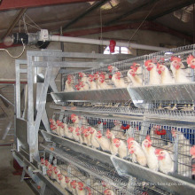 Hot selling Africa poultry baby chicken cage for breeders hens