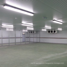 Professional Low Temperature Cold Room Storage For Chicken