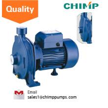 110V / 220V Einphasige Elektrisch betriebene Zentrifugalwasserpumpe