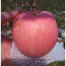 Apple из Китая, без упаковки, свежий сладкий красный FUJI Apple