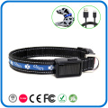 USB Rechargeable Personalized Dog Collars That Light Up