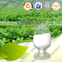 Natural Stevia Glycosides Rebaudioside-a Stevia Extract