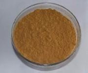 High Quality Super Anti Oxidant 3%- 20% Hydroxytyrosol, 20%-70% Oleuropein, Olive Leaf Extract