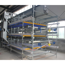 H Type Broiler Battery Cage Chicken Farm Poultry Equipment for Sale