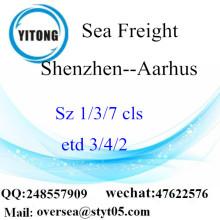 Shenzhen Port LCL củng cố để Aarhus