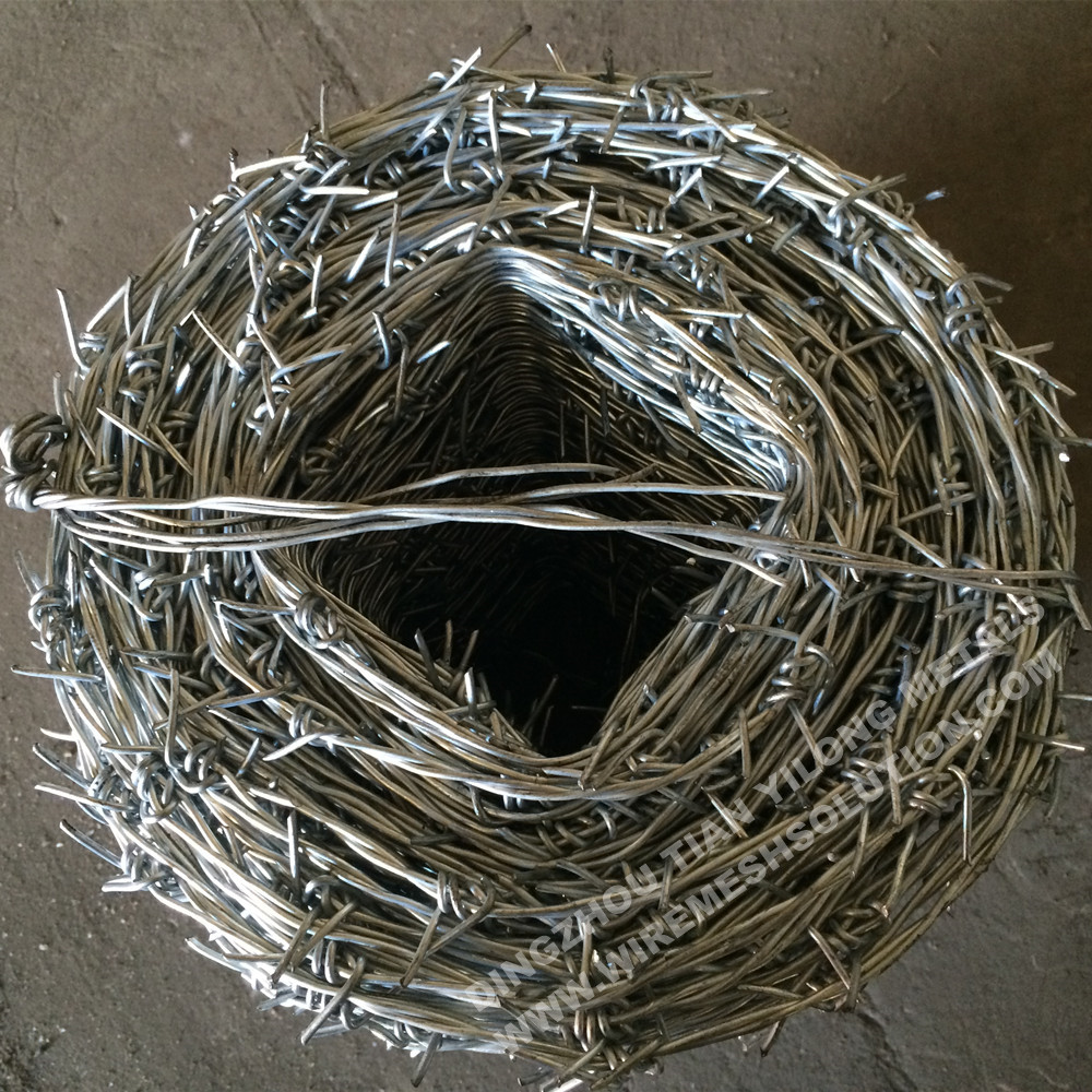 Hot Dipped Galvanized Barbed Wire for Prision