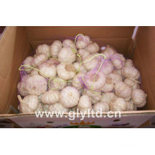 20kg Mesh Bag Verpackung Normal White Knoblauch