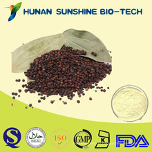 Bulk Piperine Extract 98% Black Pepper Extract Powder