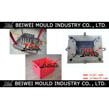 Hot Injection Plastic 24 Bottle Beer Crate Mould