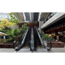 800mm Aluminium Step Vvvf Escalator with High Quality