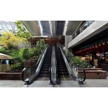 800мм алюминий шаг эскалатор vvvf с высоким качеством
