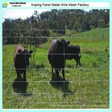 Fournisseur de clôture de bovins / moutons / animaux de qualité supérieure en 2016