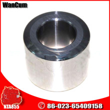 China Versorgung CUMMINS Motor Teile Nta855 Cam Follower Roller 3081248