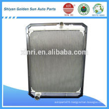 THACO Truck Parts Truck Radiator WG9725530129 for Chinese Howo Truck