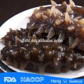 HL011 Frozen Sea Cucumber for export vacuum package