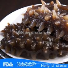 Pepino de mar congelado mejor calidad