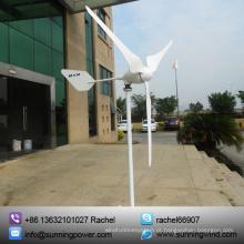 Gerador de energia de vento Mini 1000W com projeto da patente (SN-1000W)