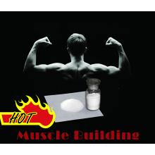 Esteróide em Pó Testosteron Cypionate 58-20-8 para Muscle Building