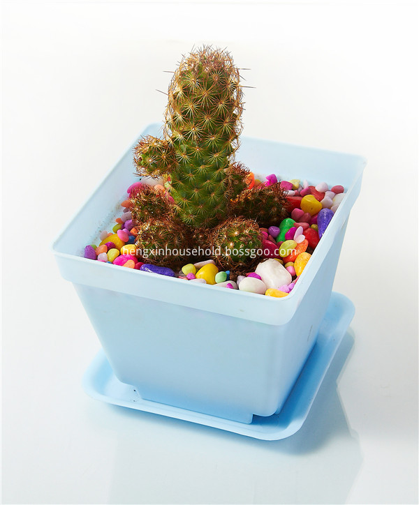 Small Square Flower Pots