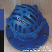DIN / BS Std hierro fundido / válvula de pie de hierro dúctil en la aplicación de la bomba