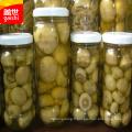 Nourriture en conserve de champignons chinois