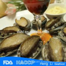 Konserviertes Abalone-Fleisch