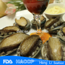 Canned Abalone meat