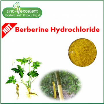 Berberine hcl 97٪ من مستخلص Berberis Aristata