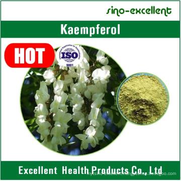 100% Natural Kaempferia Galanga Extract