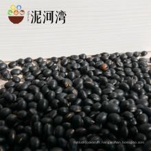 Chinois de haute qualité petit haricot noir de kiney, haricot de sac, toutes sortes de haricots