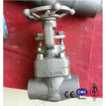 Forged Steel Valve A105 Lf2 F304 Material