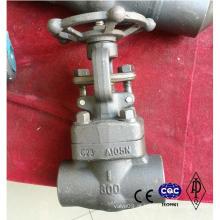 Válvula de aço forjada A105 Lf2 F304 Material