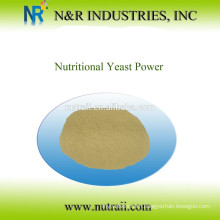 Reliable supplier Nutritional Yeast Powder