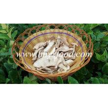 Boletus secado orgánico chino Edulis Slices Porcini Setas silvestres Setas porcini setas