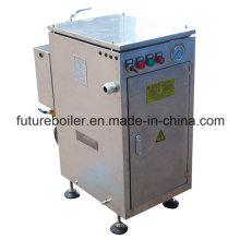 Chaudière à vapeur électrique en acier inoxydable 3kw pour usage domestique