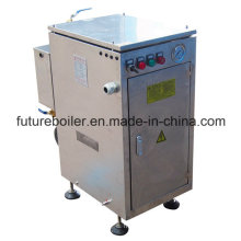 Ldr Movable Electric Steam Generator