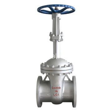 Stem Extension Cryogenic Gate Valve
