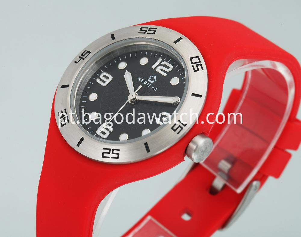 Stainless Steel Rubber Watches