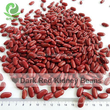 New Crop Red Kidney Beans Dry Red Kidney Bean