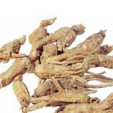 Ginseng-Extrakt Gesundheitstee