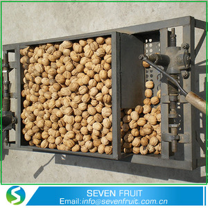 Wholesale Natural Walnut Unshelled Walnut In Shell Sale